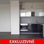 ( Pronajato ) Pronájem prostorného, světlého bytu, novostavba 3+kk/B, GS Kryšpínova ul. Praha  - Dolní Měcholupy
