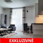 ( Pronajato ) Pronájem bytu po celkové rekonstrukci 1+kk, ulice Heydukova, Praha 8 - Libeň